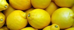 Rezept Salz-Zitronen nach Yotam Ottolenghi. Stefanie Kunze, Ernährungsberatung